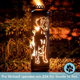 Feuerstelle Deutsch Drahthaar